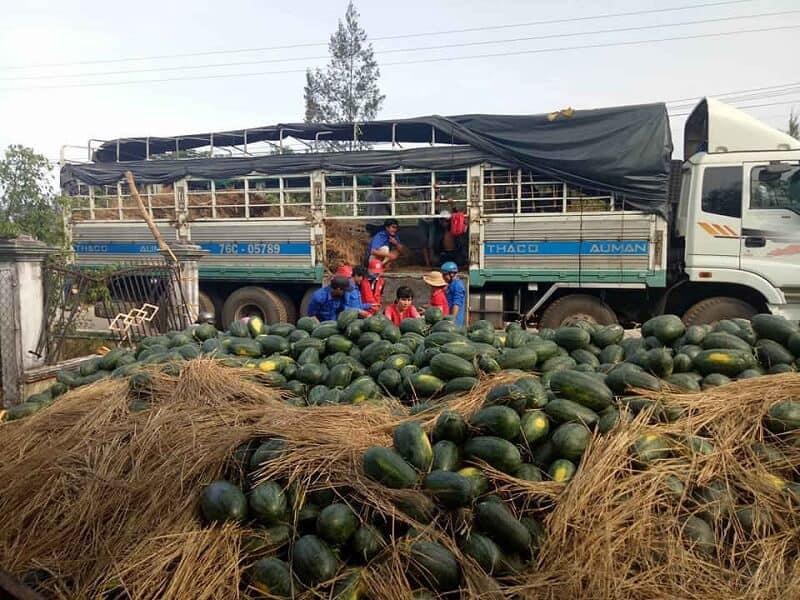 vận chuyển hàng nông sản