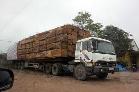 Vận chuyển gỗ thành phẩm từ Tây Nguyên